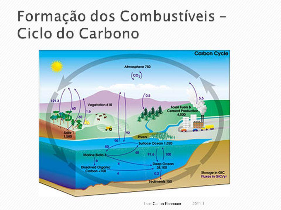 Formação dos Combustíveis - Ciclo do Carbono