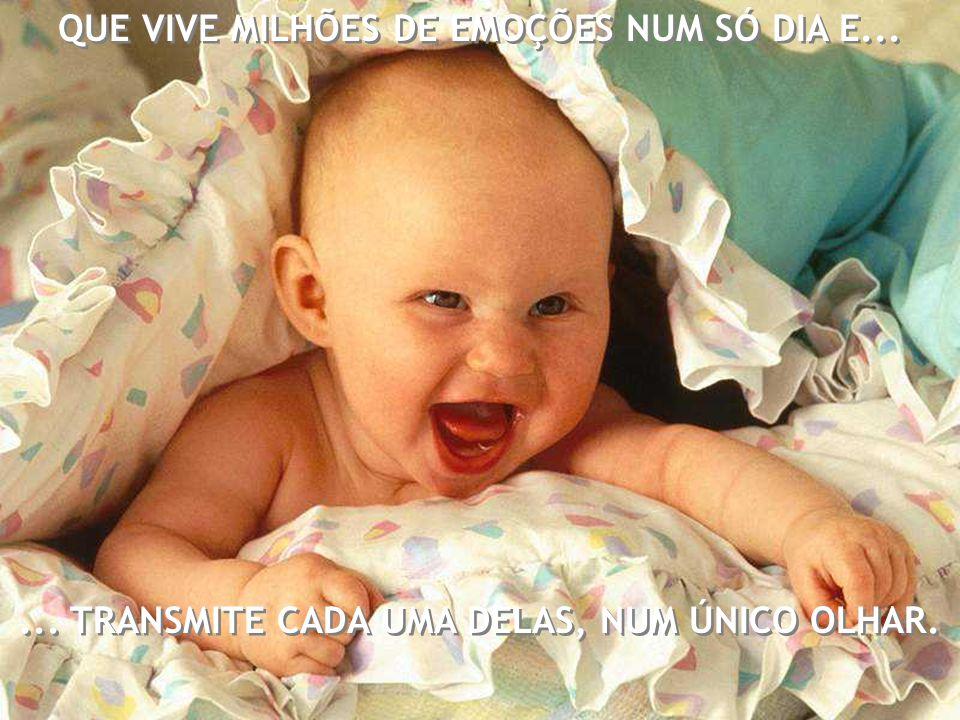 QUE VIVE MILHÕES DE EMOÇÕES NUM SÓ DIA E...