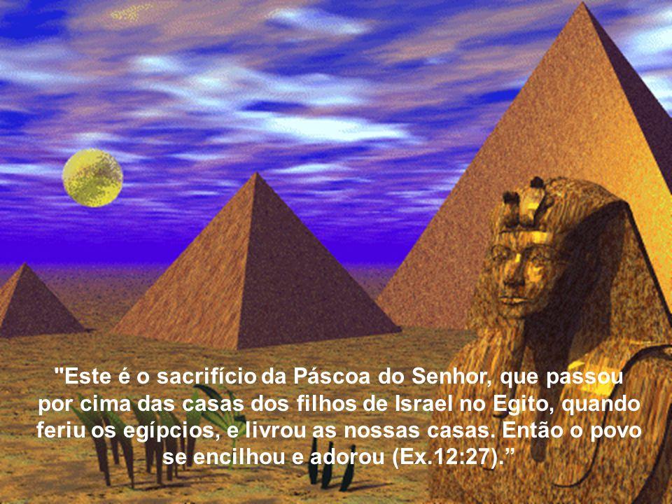 Este é o sacrifício da Páscoa do Senhor, que passou por cima das casas dos filhos de Israel no Egito, quando feriu os egípcios, e livrou as nossas casas.