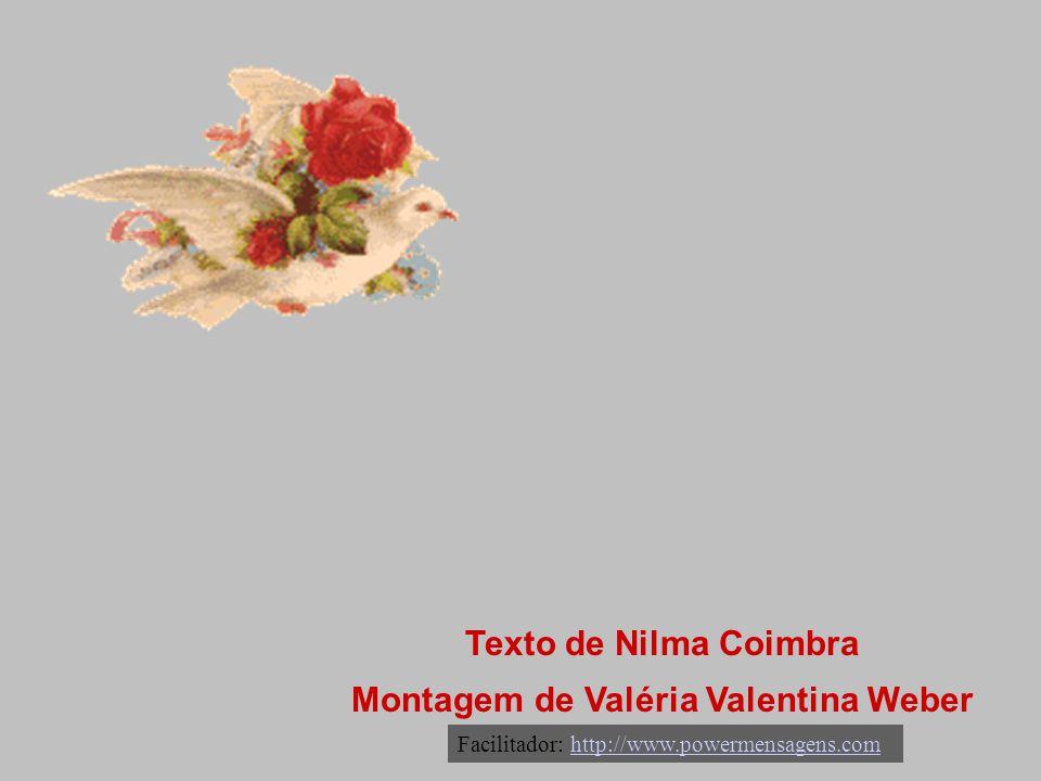 Montagem de Valéria Valentina Weber