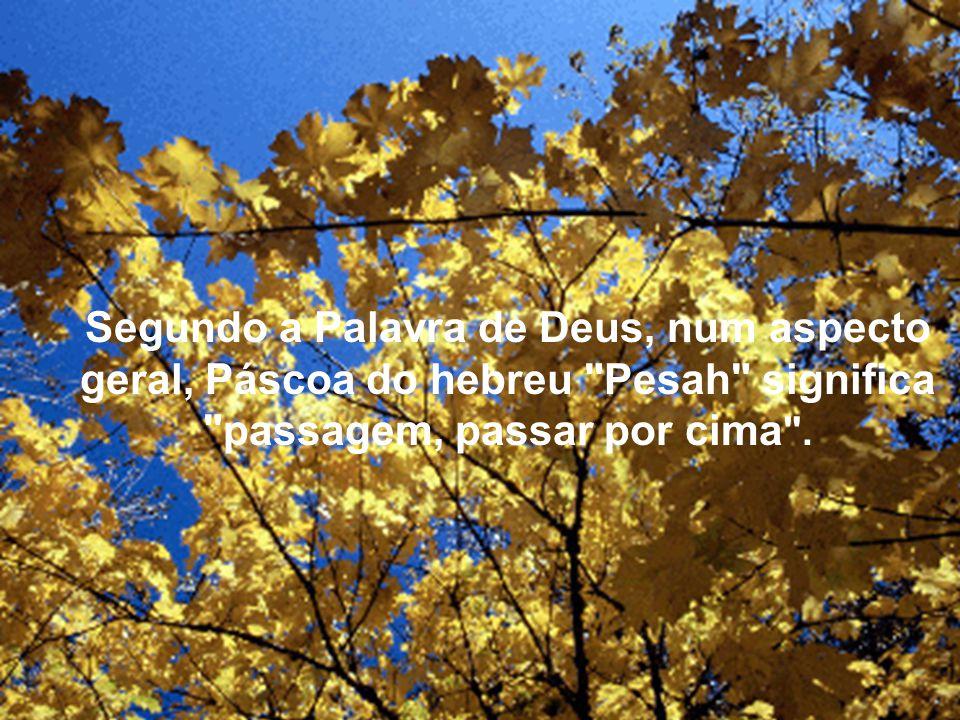 Segundo a Palavra de Deus, num aspecto geral, Páscoa do hebreu Pesah significa passagem, passar por cima .