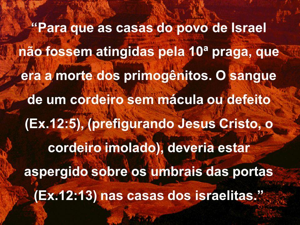 Para que as casas do povo de Israel não fossem atingidas pela 10ª praga, que era a morte dos primogênitos.
