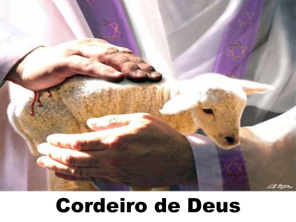 Cordeiro de Deus 194