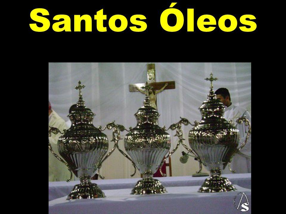 Santos Óleos