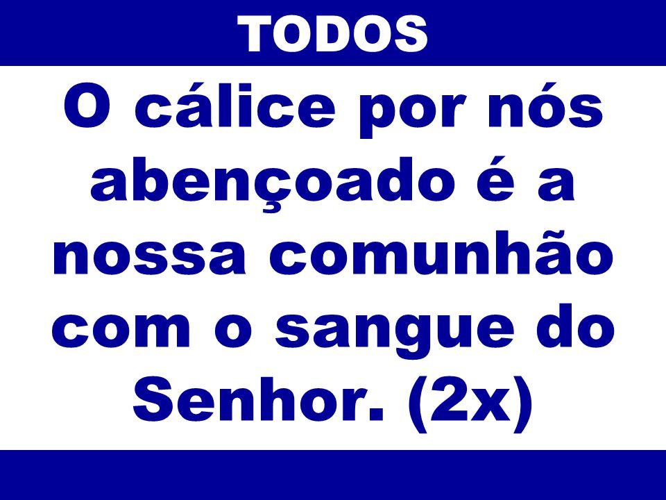 TODOS O cálice por nós abençoado é a nossa comunhão com o sangue do Senhor. (2x) 66
