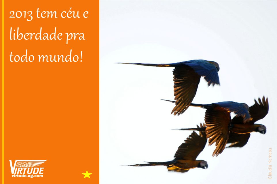 2013 tem céu e liberdade pra todo mundo!