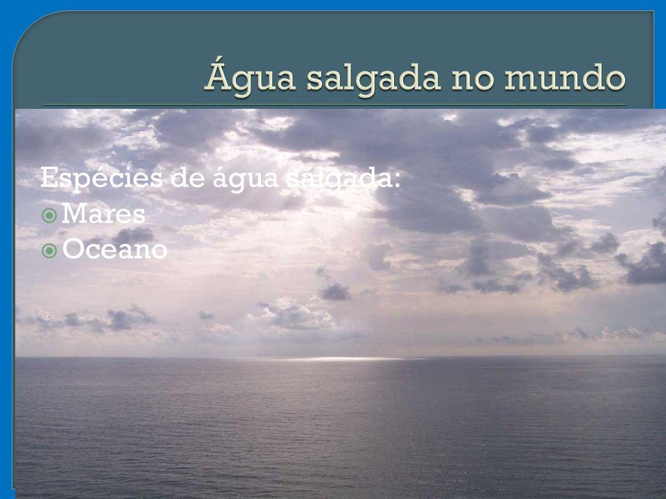 Água salgada no mundo Espécies de água salgada: Mares Oceano