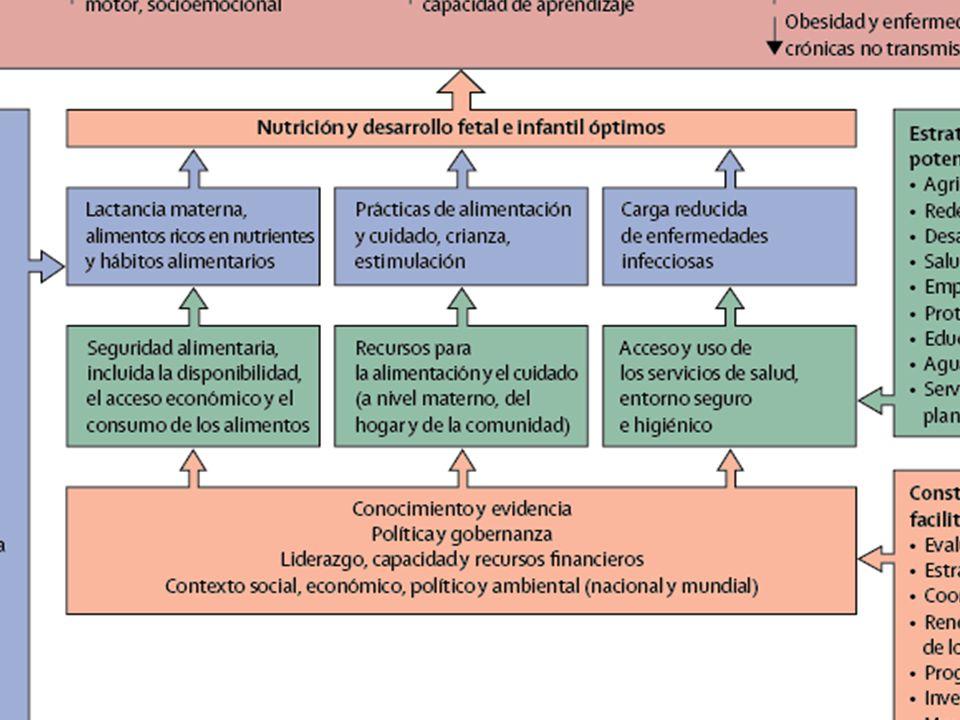 Marco para a acção para lograr una óptima nutrição e desenvolvimento fetal e infantil