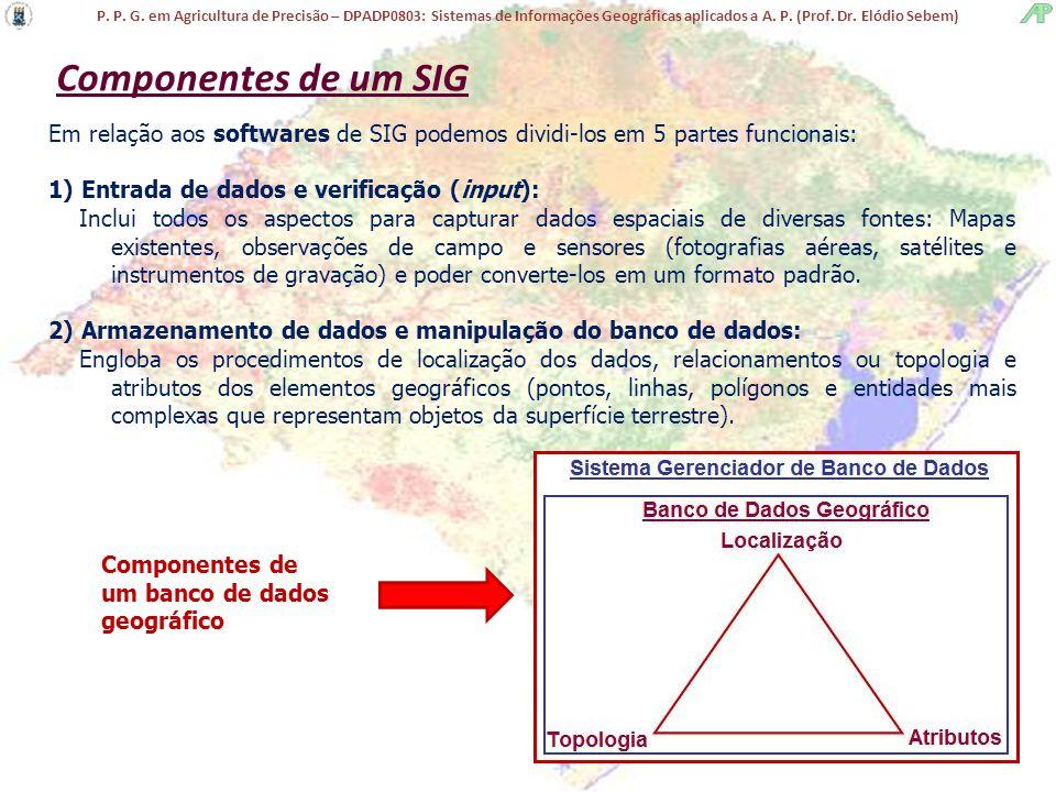 Componentes de um SIG Em relação aos softwares de SIG podemos dividi-los em 5 partes funcionais: 1) Entrada de dados e verificação (input):