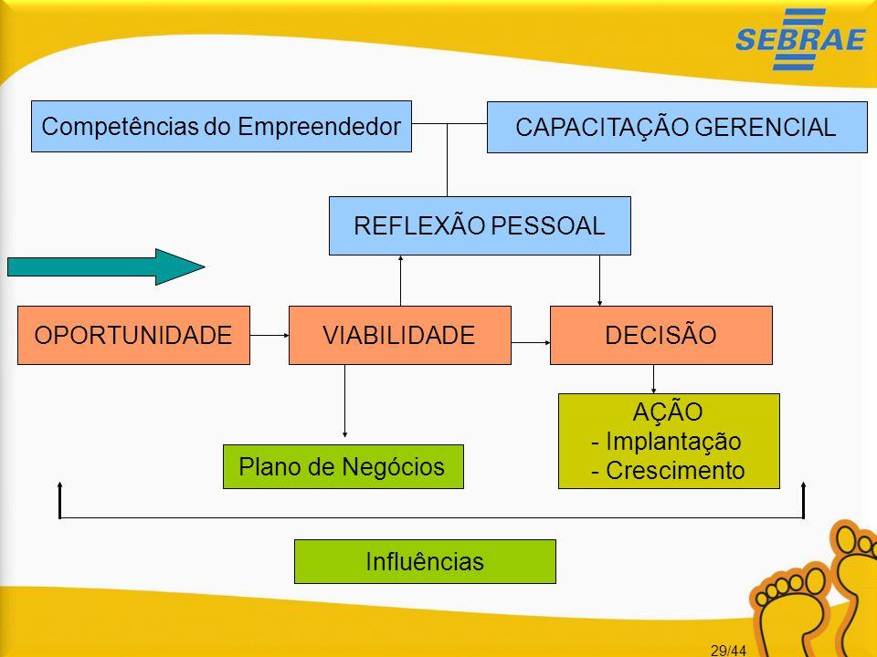 Competências do Empreendedor CAPACITAÇÃO GERENCIAL