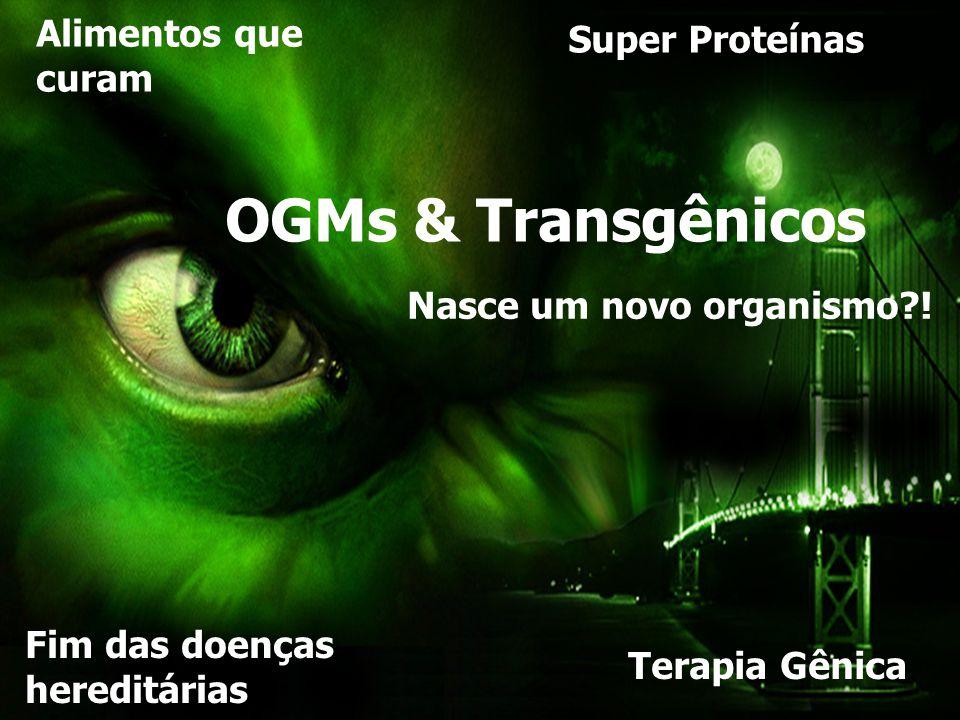 OGMs & Transgênicos NASCE UM TRANSGÊNICO Alimentos que Super Proteínas