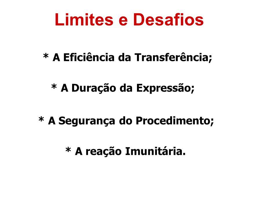 Limites e Desafios * A Eficiência da Transferência;