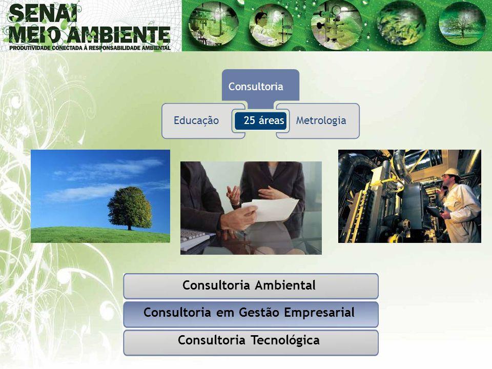 Consultoria Ambiental Consultoria em Gestão Empresarial