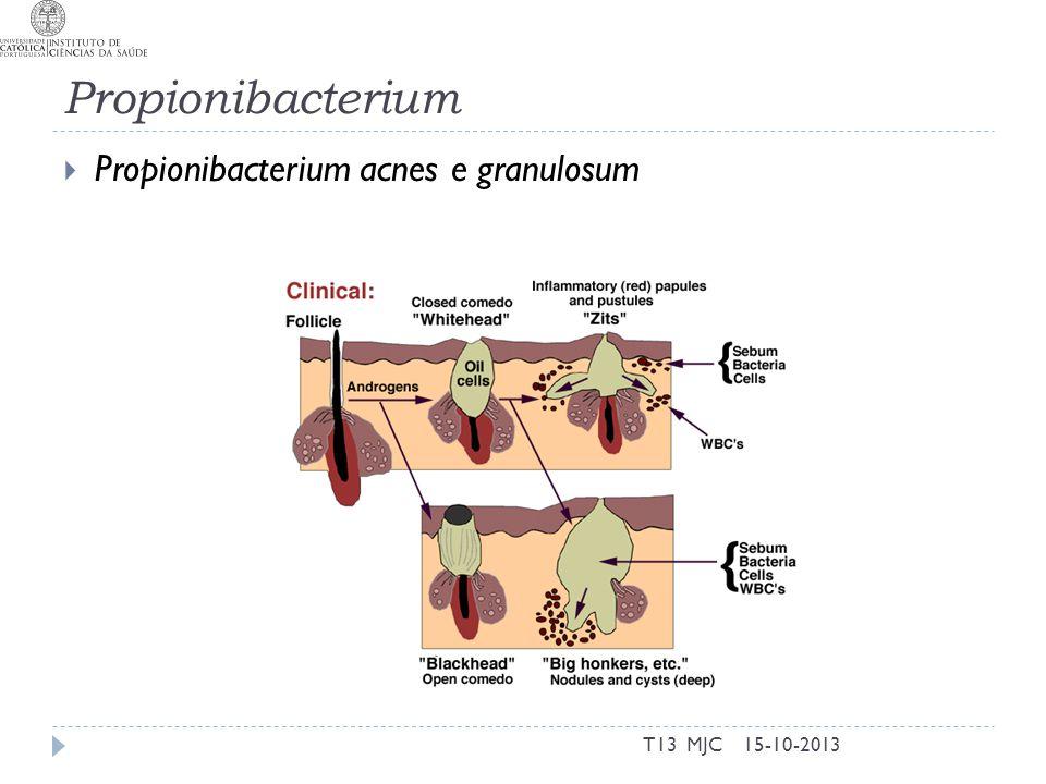 Propionibacterium Propionibacterium acnes e granulosum T13 MJC