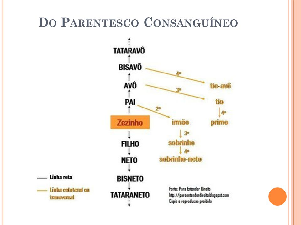 Do Parentesco Consanguíneo
