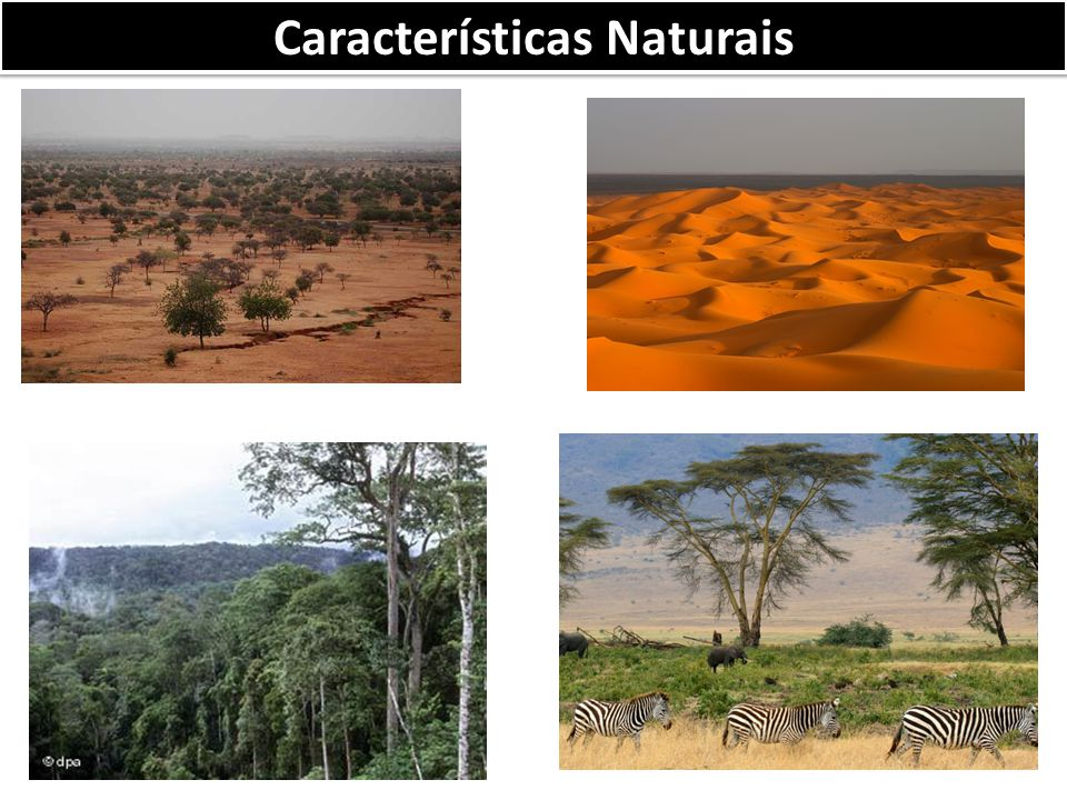 Características Naturais