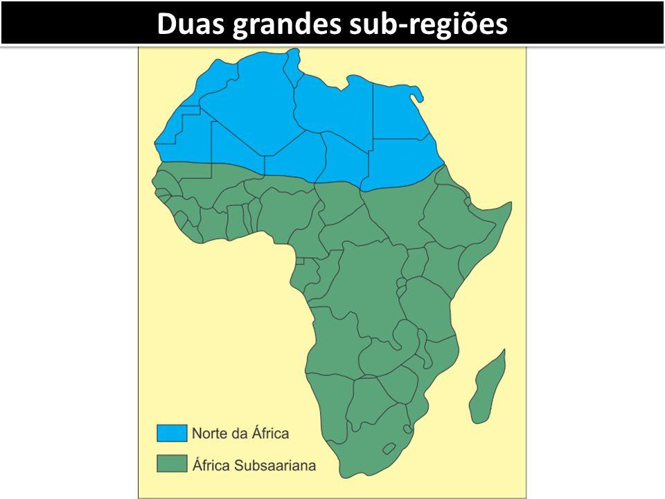 Duas grandes sub-regiões