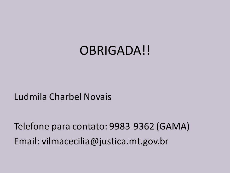 OBRIGADA!! Ludmila Charbel Novais
