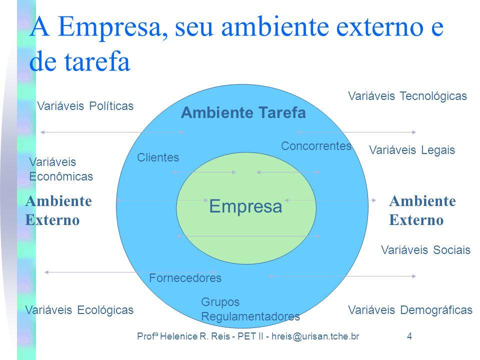 A Empresa, seu ambiente externo e de tarefa