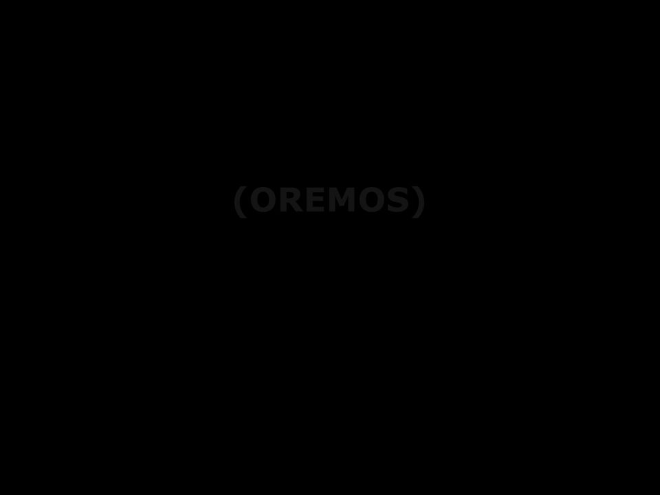(OREMOS)