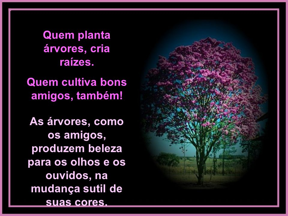 Quem planta árvores, cria raízes. Quem cultiva bons amigos, também!