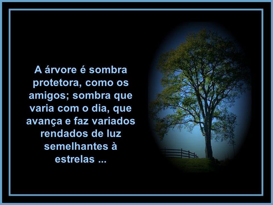 A árvore é sombra protetora, como os amigos; sombra que varia com o dia, que avança e faz variados rendados de luz semelhantes à estrelas ...