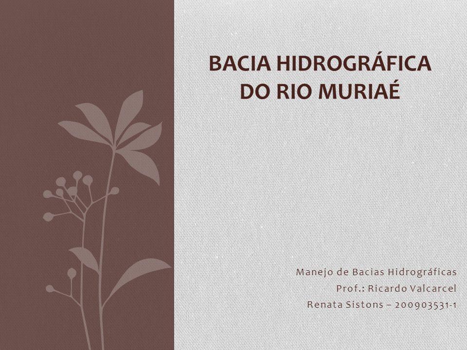 BACIA HIDROGRÁFICA DO RIO MURIAÉ