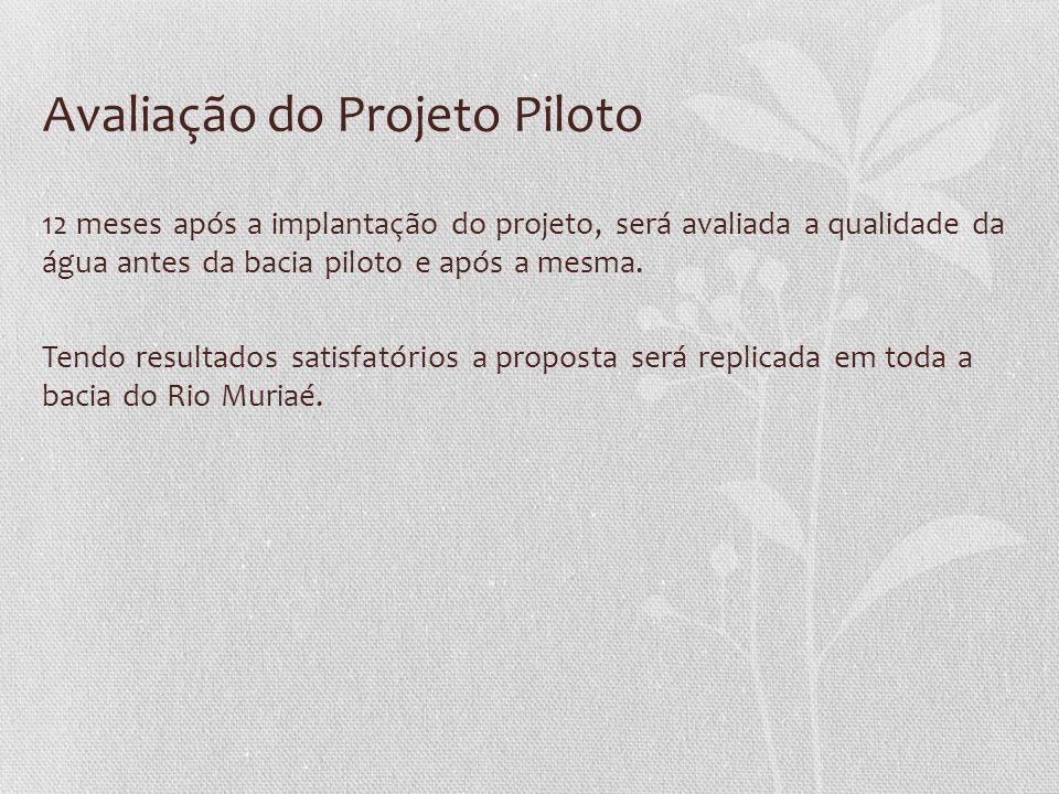 Avaliação do Projeto Piloto