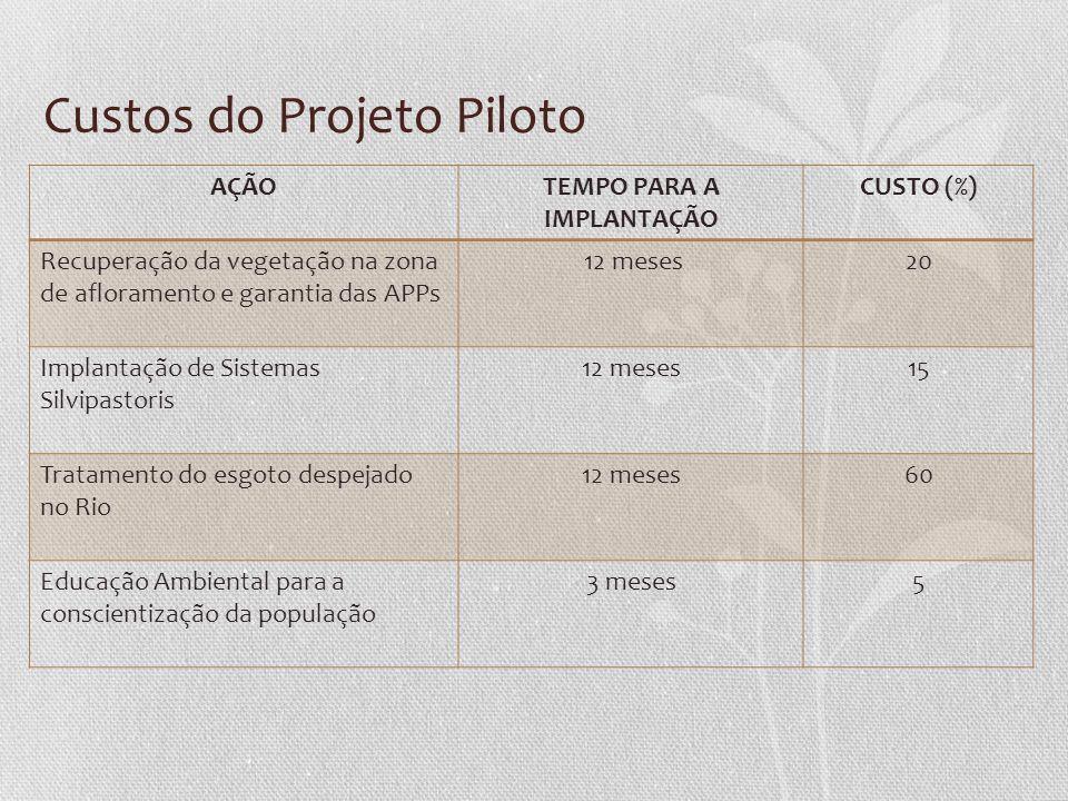 Custos do Projeto Piloto