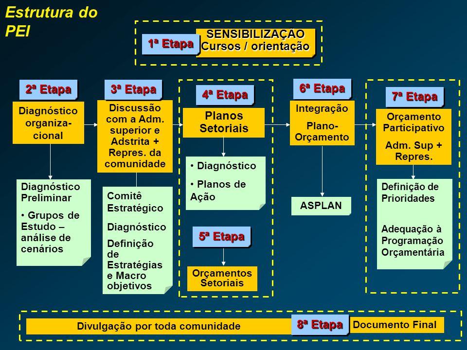 Estrutura do PEI SENSIBILIZAÇÃO Cursos / orientação 1ª Etapa 2ª Etapa