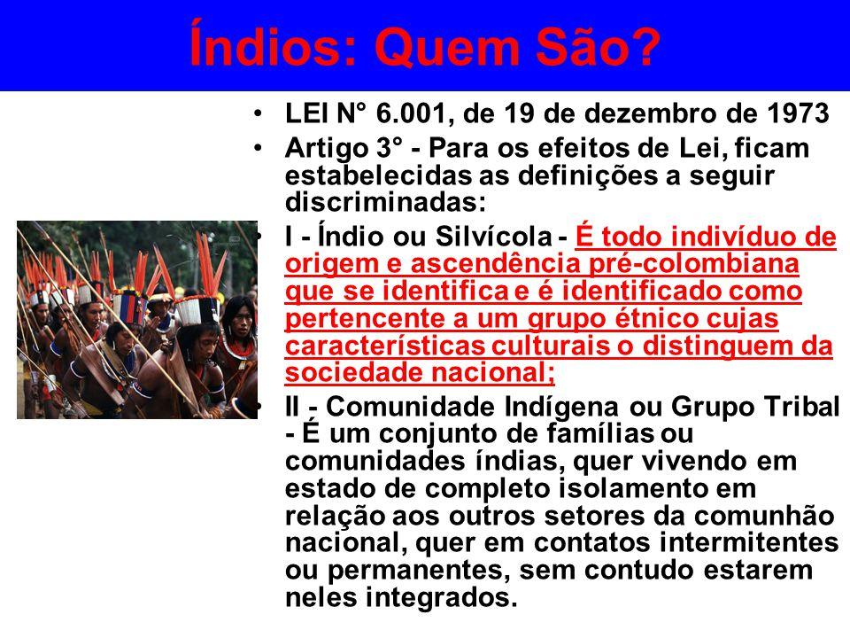 Índios: Quem São LEI N° 6.001, de 19 de dezembro de 1973