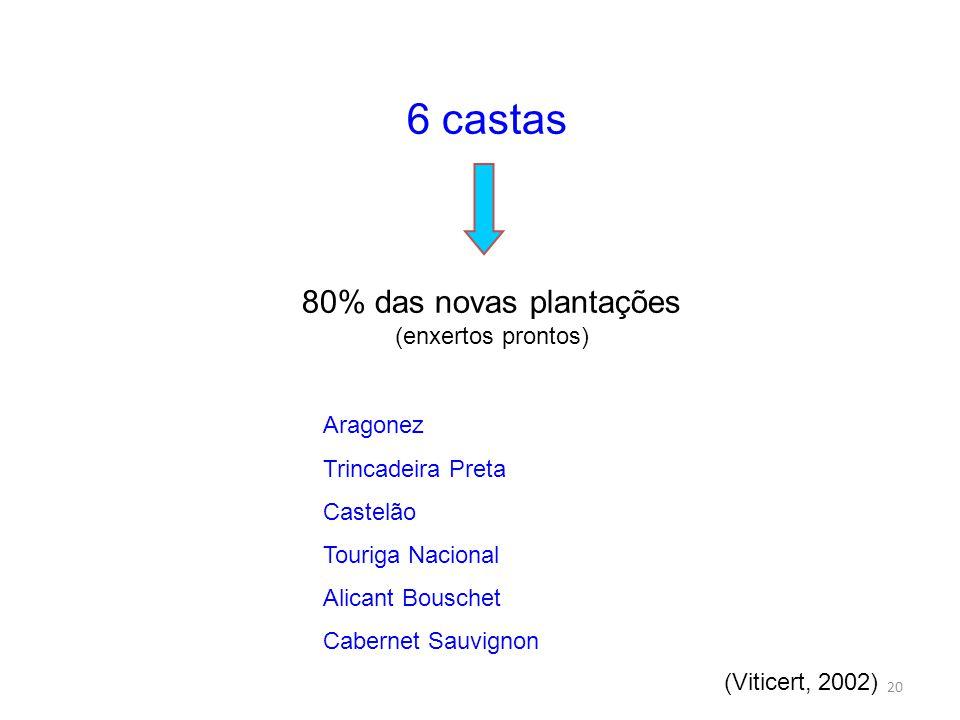 80% das novas plantações (enxertos prontos)