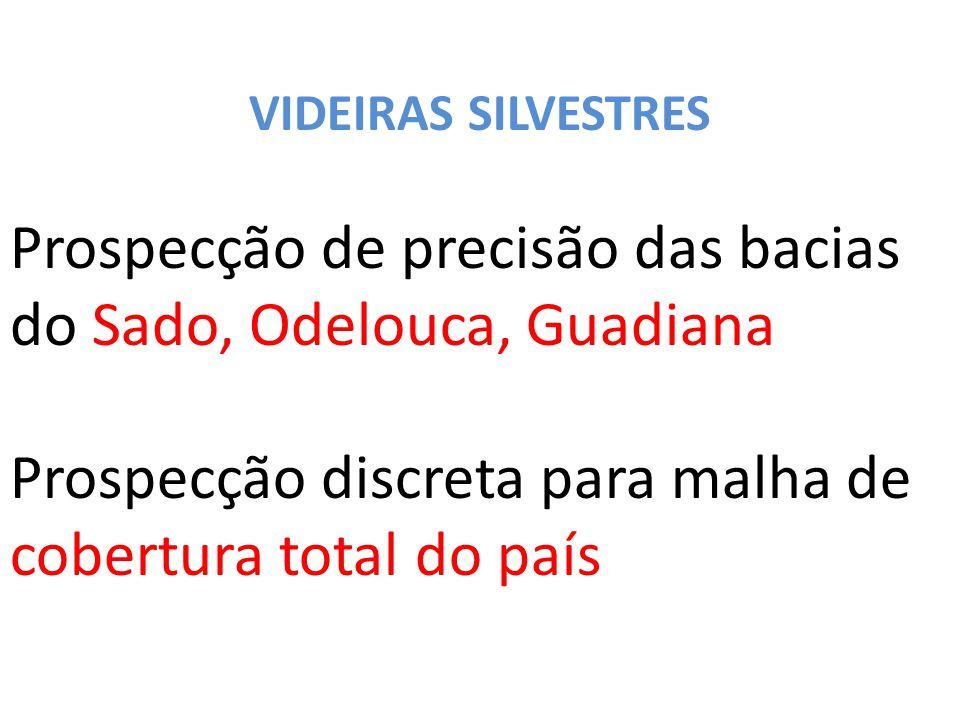 Prospecção de precisão das bacias do Sado, Odelouca, Guadiana