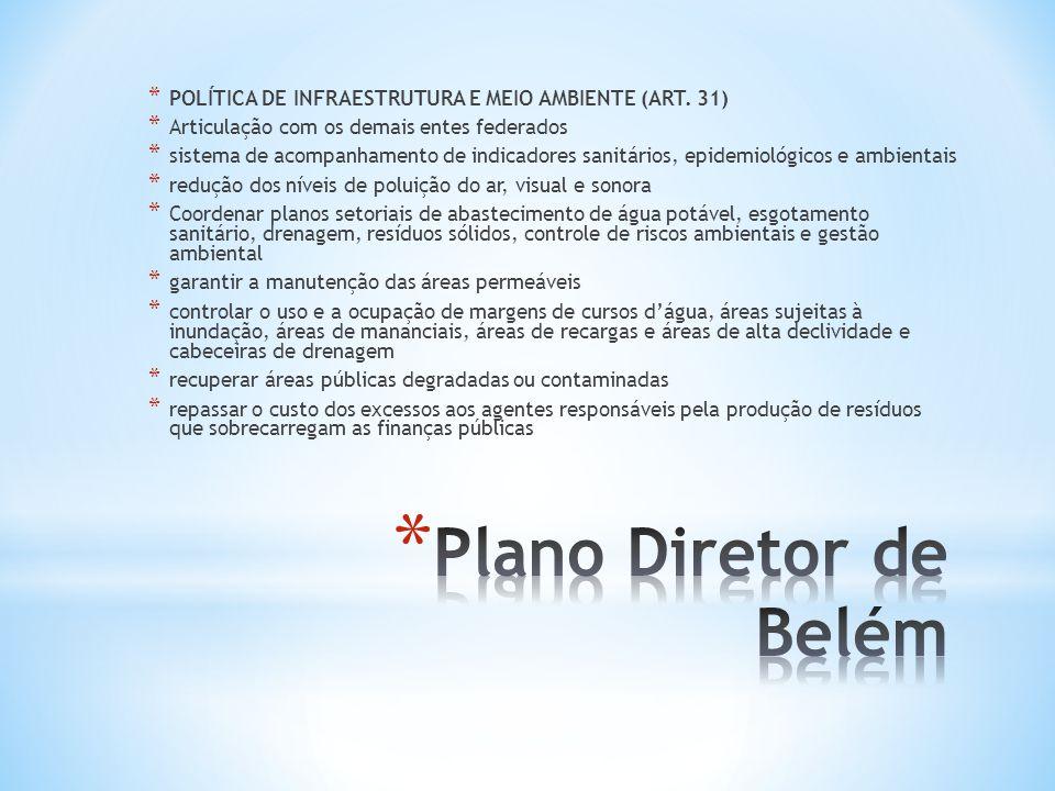 POLÍTICA DE INFRAESTRUTURA E MEIO AMBIENTE (ART. 31)