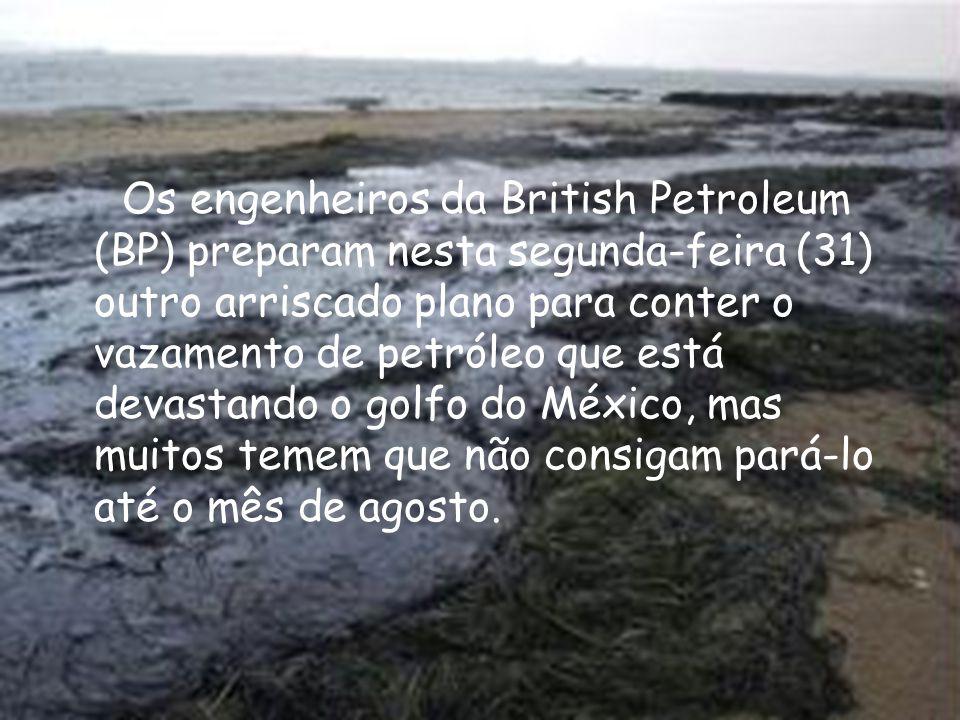 Os engenheiros da British Petroleum (BP) preparam nesta segunda-feira (31) outro arriscado plano para conter o vazamento de petróleo que está devastando o golfo do México, mas muitos temem que não consigam pará-lo até o mês de agosto.