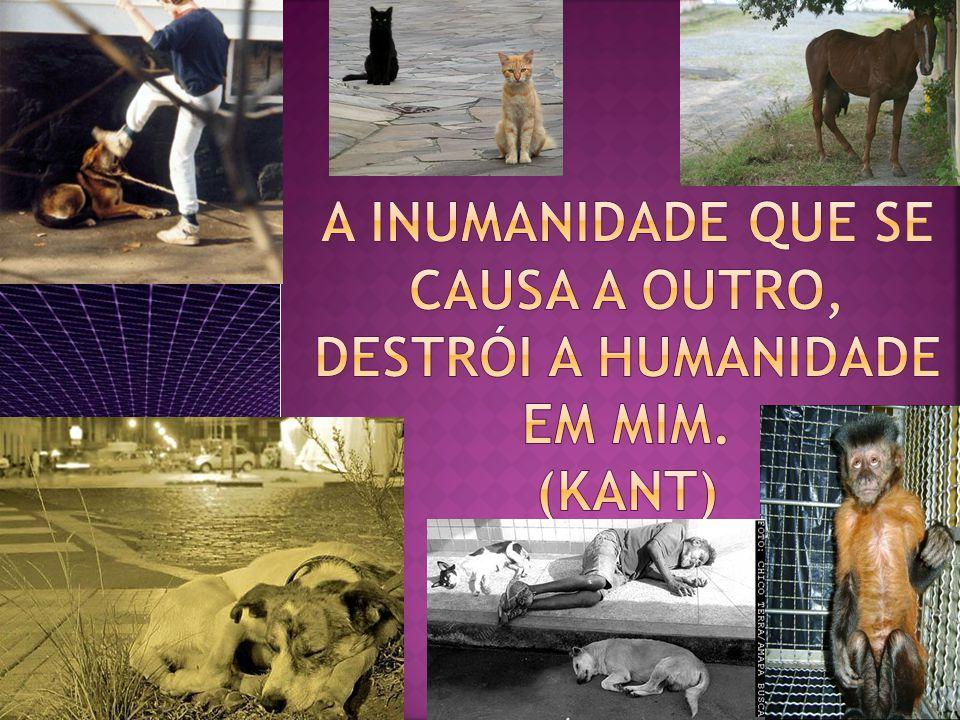 A INUMANIDADE QUE SE CAUSA A OUTRO, DESTRÓI A HUMANIDADE EM MIM. (kant)