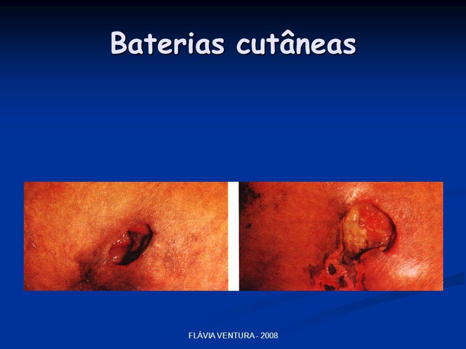 Baterias cutâneas FLÁVIA VENTURA - 2008