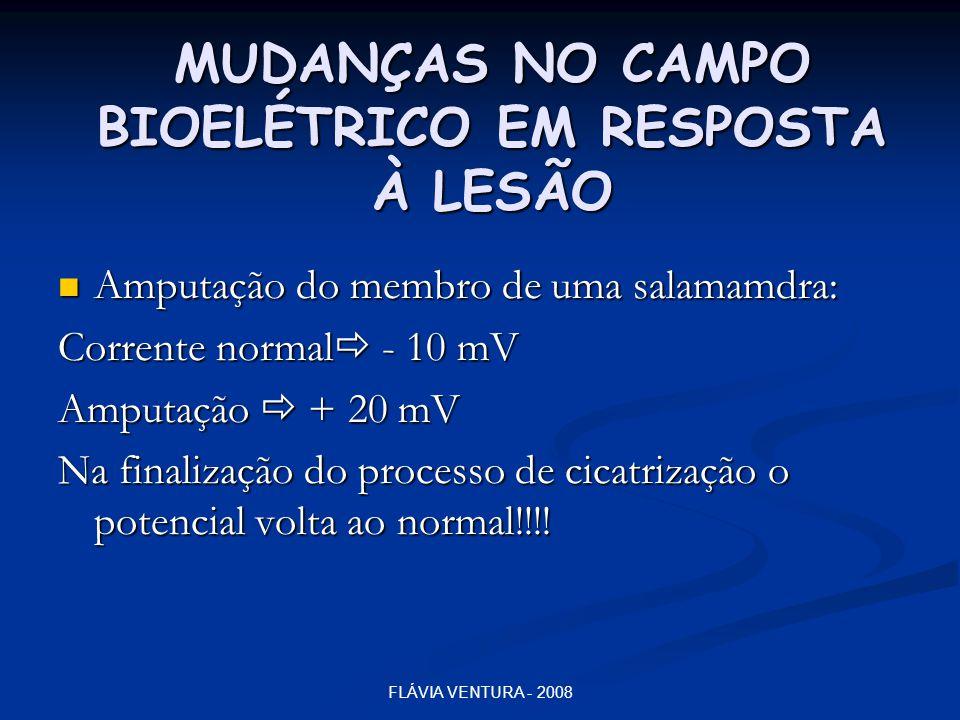 MUDANÇAS NO CAMPO BIOELÉTRICO EM RESPOSTA À LESÃO