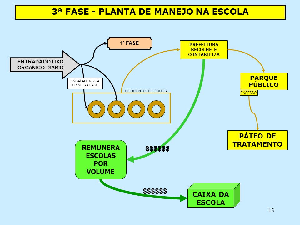 3ª FASE - PLANTA DE MANEJO NA ESCOLA