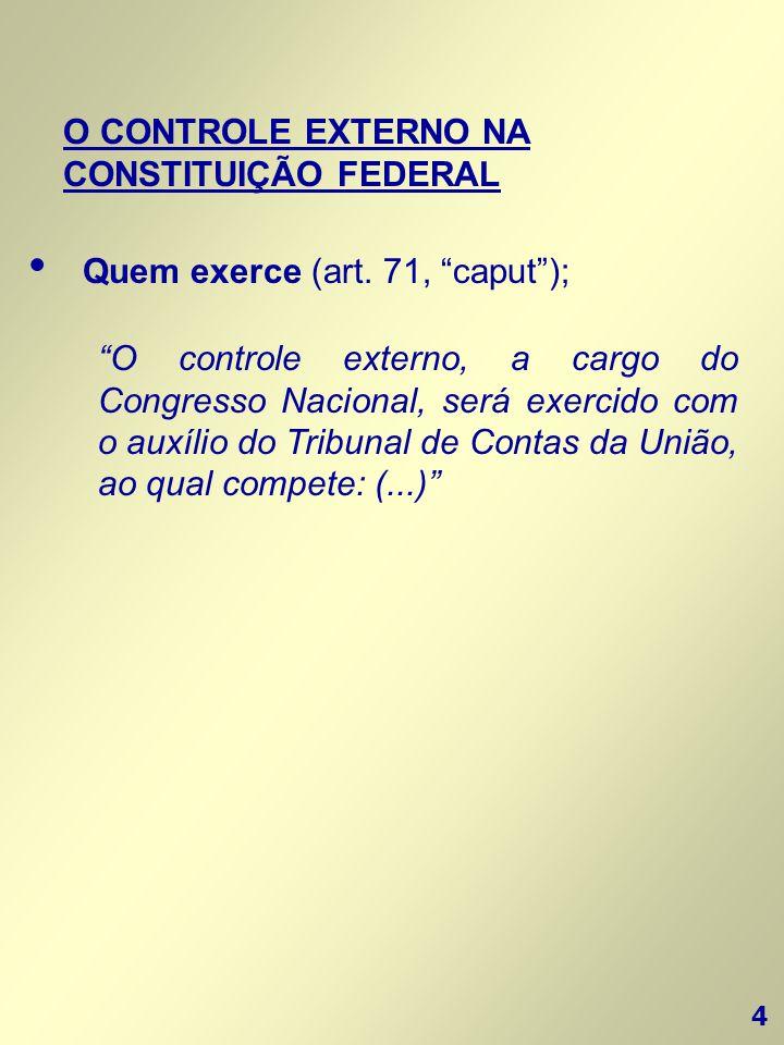 O CONTROLE EXTERNO NA CONSTITUIÇÃO FEDERAL