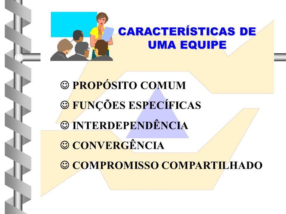 CARACTERÍSTICAS DE UMA EQUIPE