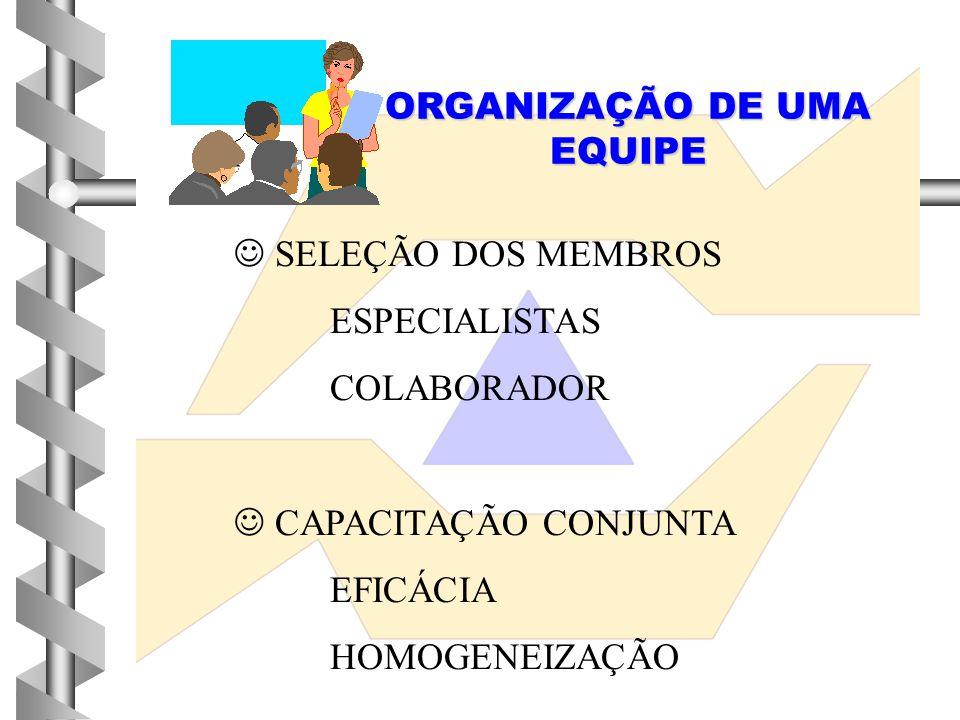 ORGANIZAÇÃO DE UMA EQUIPE