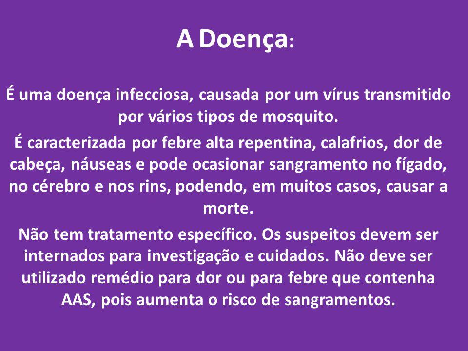 A Doença: É uma doença infecciosa, causada por um vírus transmitido por vários tipos de mosquito.