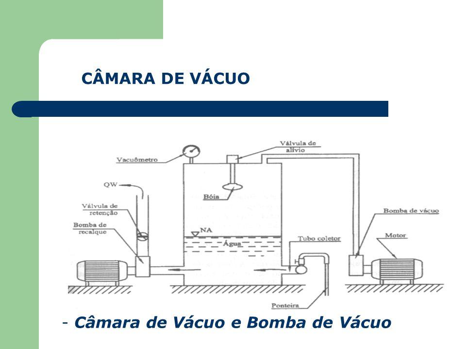 CÂMARA DE VÁCUO Câmara de Vácuo e Bomba de Vácuo