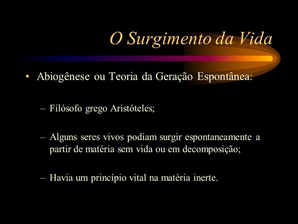 O Surgimento da Vida Abiogênese ou Teoria da Geração Espontânea: