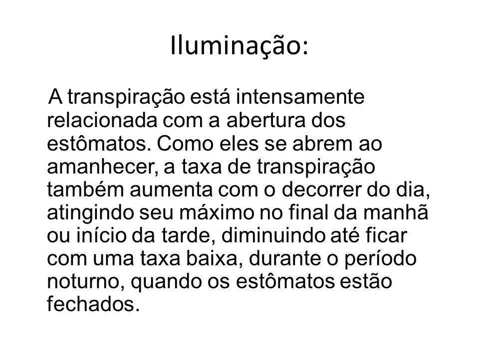 Iluminação: