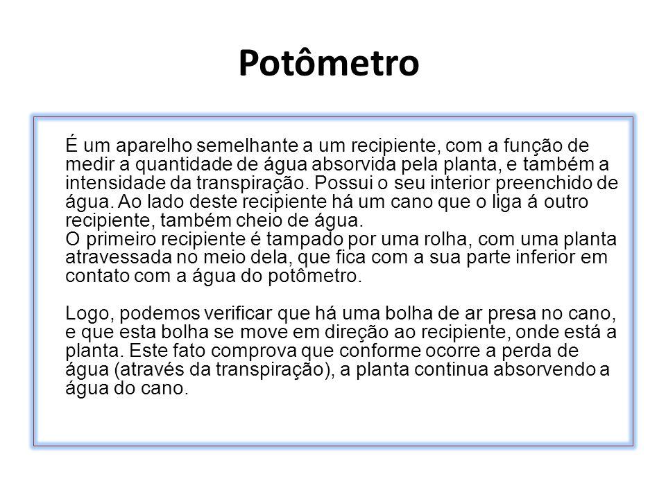 Potômetro