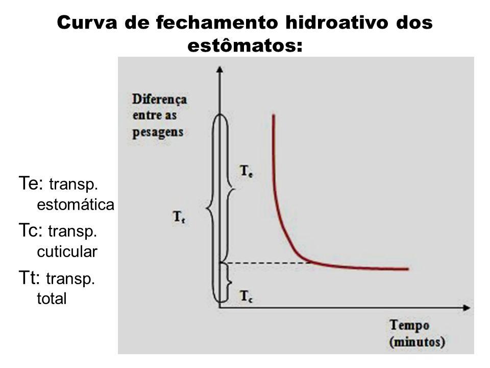 Curva de fechamento hidroativo dos estômatos: