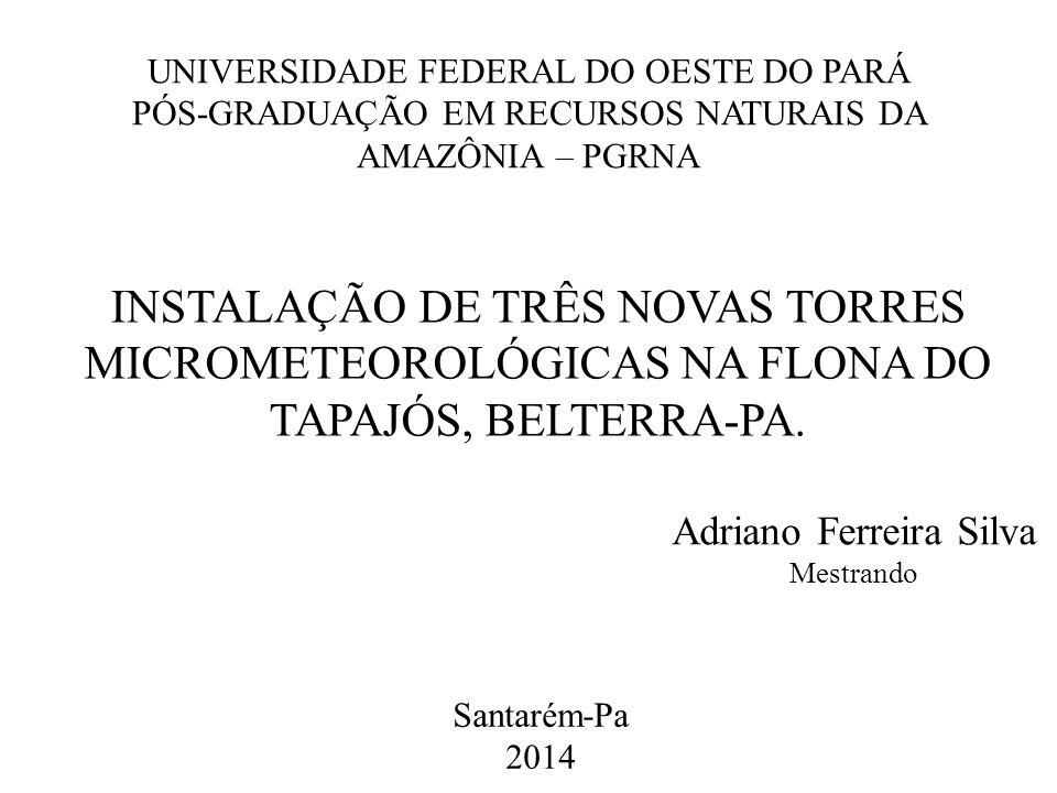 Adriano Ferreira Silva Mestrando
