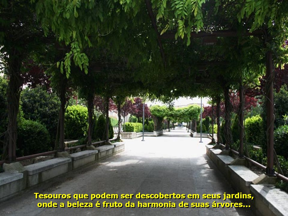 IMG_1528 - ESPANHA - SALAMANCA - JARDIM-700